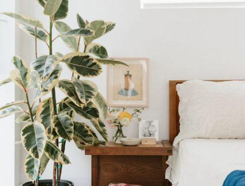 aromaterapija nesciajai